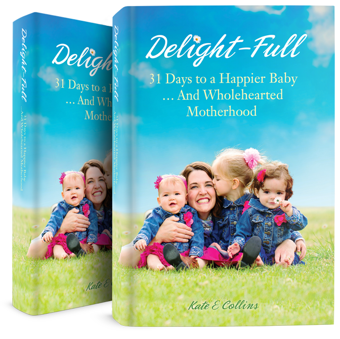Delight-Full book